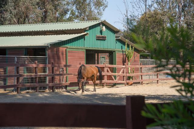 6997 Via Del Charro, Rancho Santa Fe, CA 92067
