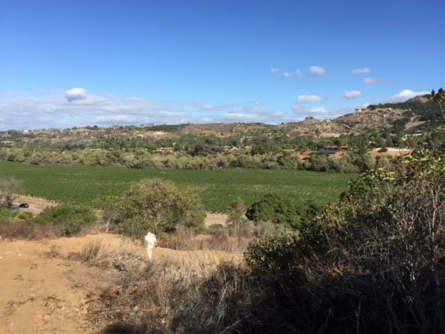 0 Camino Del Rey #32, Bonsall, CA 92003
