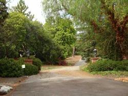 16827 Via De La Valle #1, Rancho Santa Fe, CA 92067