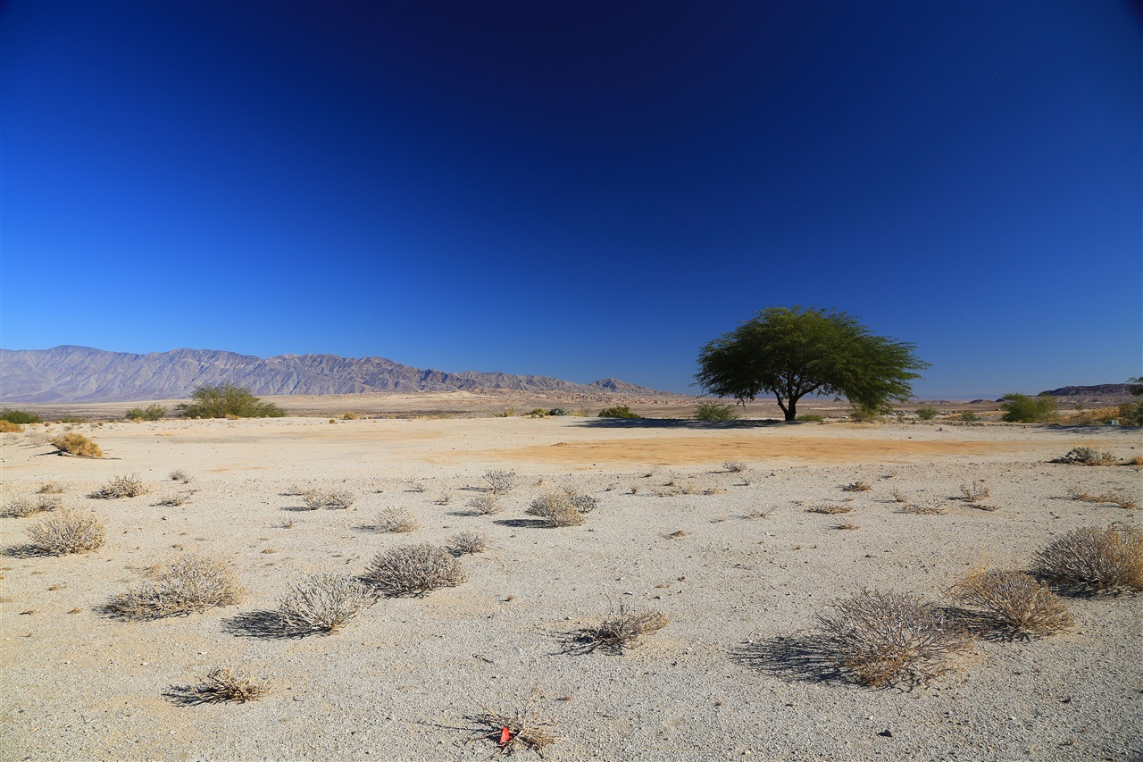 46 Desert Oriole Drive #46, Borrego Springs, CA 92004
