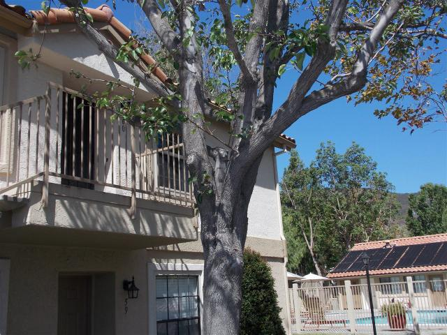 10315 Azuaga St #60, San Diego, CA 92129