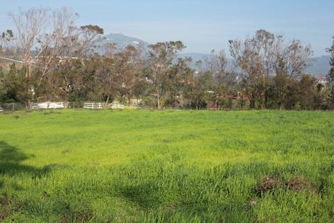 3281 Poppy Hills Ln #1, Encinitas, CA 92024