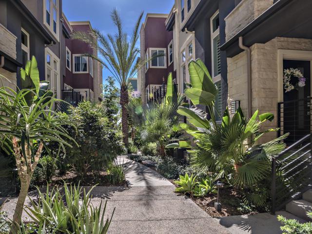 7911 Modern Oasis Dr, San Diego, CA 92108