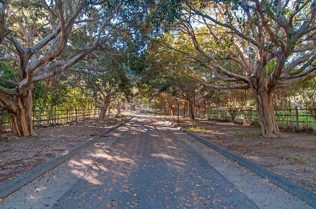 15350 El Camino Real, Rancho Santa Fe, CA 92067