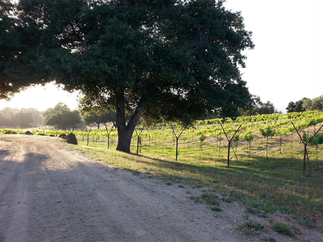 28185 Angel Mountain Road, Santa Ysabel, CA 92070