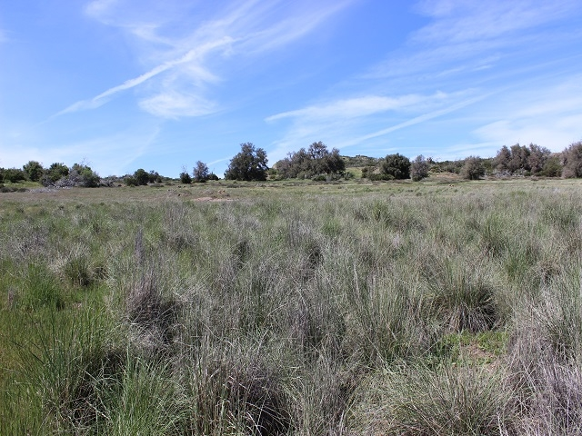 18012 Cuyamaca Meadows Road #0, Julian, CA 92036