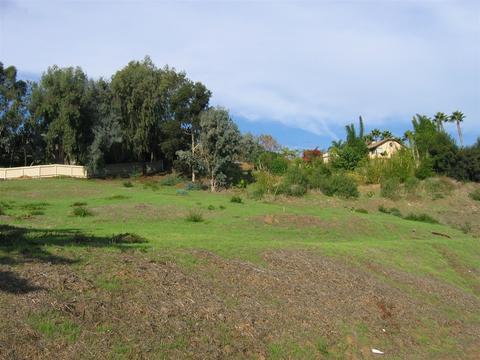 1534 Orpheus #4, Encinitas, CA 92024