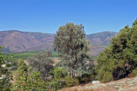 15421 Pauma Valley Dr #-, Pauma Valley, CA 92061