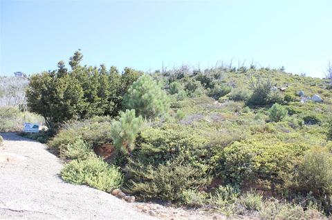 2 5 Acres N Peak Way #10, Julian, CA 92036
