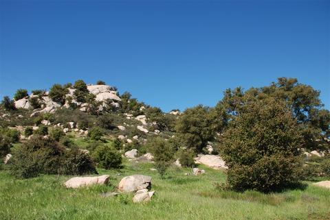 246 Highland Mesa #DR, Escondido, CA 92025