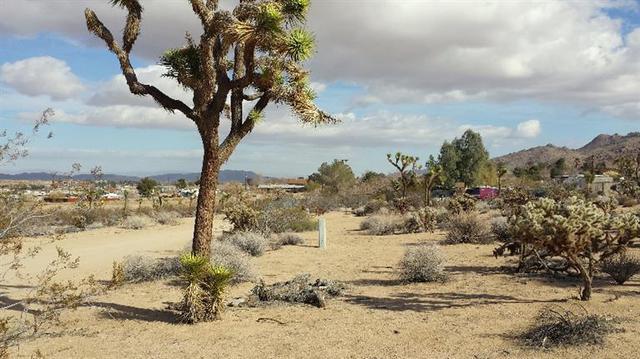 Undisclosed, Joshua Tree, CA 92252