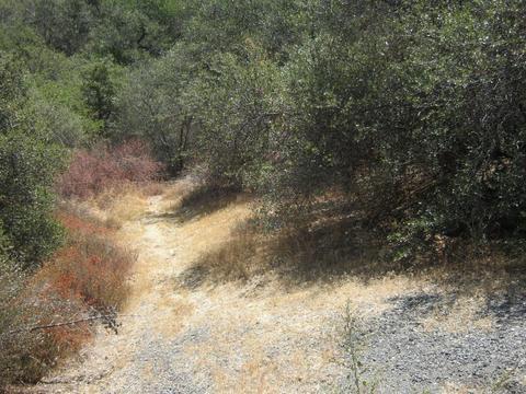 0 Calle El Jornado, Green Valley, CA 91350