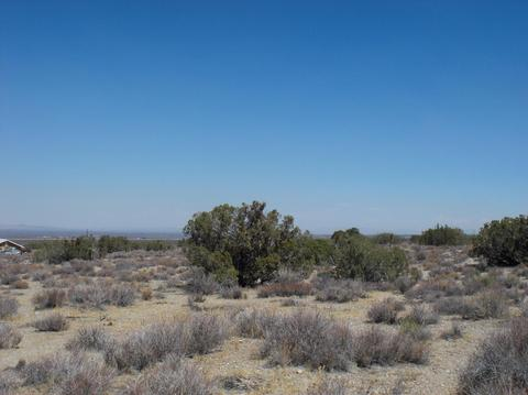 Undisclosed, Llano, CA 93544
