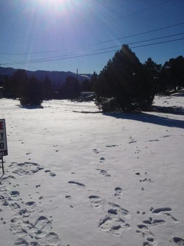 Undisclosed, Big Bear, CA
