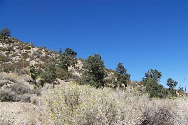 0 Sand Canyon Rd, Pinon Hills, CA 92372