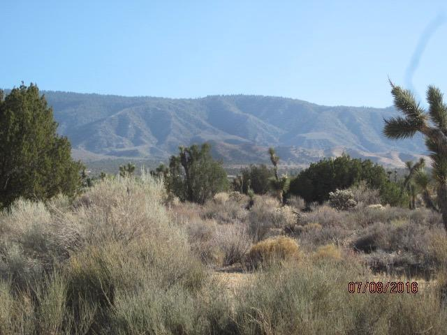 Undisclosed, Pinon Hills, CA 92371
