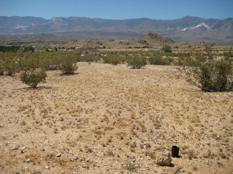 0 Off Custer, Lucerne Valley, CA 92356