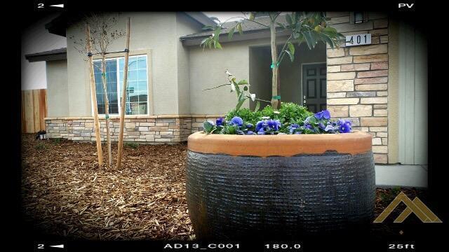 517 Kingscross Ave, Bakersfield, CA 93307