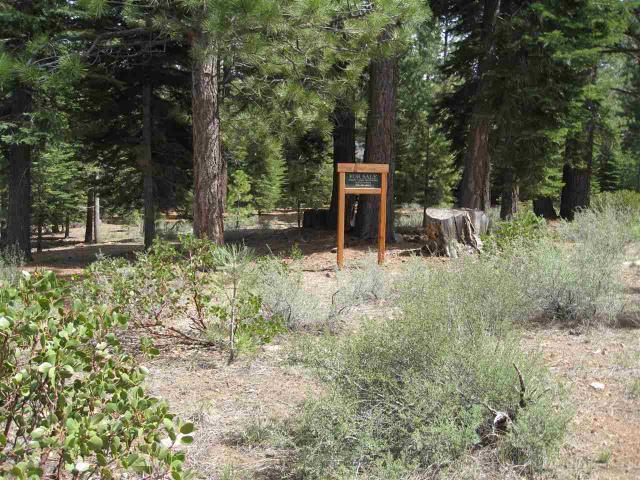 240 George Giffen, Truckee, CA 96161