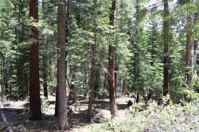 1186 Regency Way, Tahoe Vista, CA 96148
