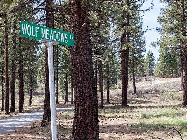 Xxxx No Site Address #XXXX WOLF MEADOWS LANE, Portola, CA 96122