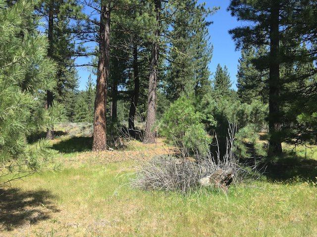 799 Valley Ranch Dr, Clio, CA 96106