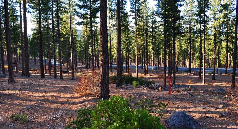 8149 Fallen Leaf Way, Truckee, CA 96161