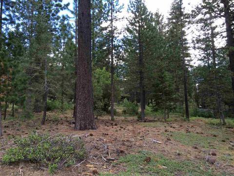 15554 Alder Creek Rd, Truckee, CA 96161