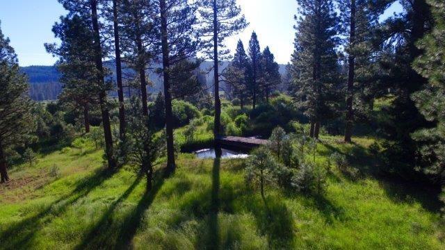 151 Boulder Dr, Clio, CA 96106