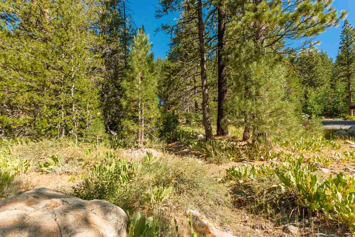 235 Shoshone Way, Olympic Valley, CA 96146