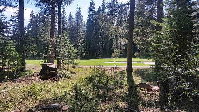 13098 Ski View Loop, Truckee, CA 96161