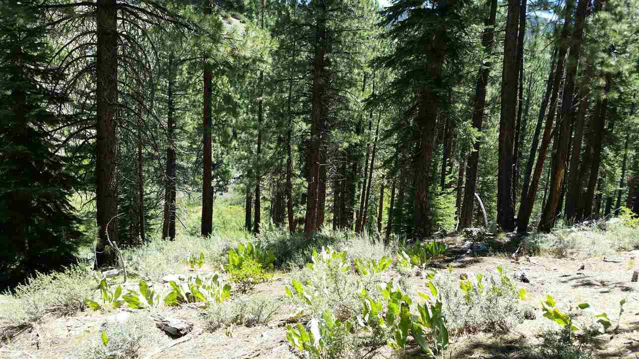 13646 Martis Peak Road, Truckee, CA 96161