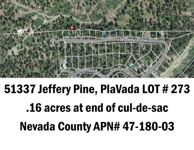 51337 Jeffery Pine Dr, Soda Springs, CA 95728