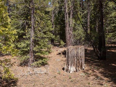 Xx1 Amodei Ranch Road, Sierraville, CA 96126