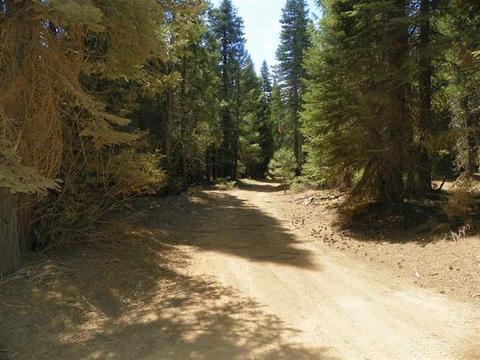 4455 Poplar Creek Rd, Johnsville, CA 95971