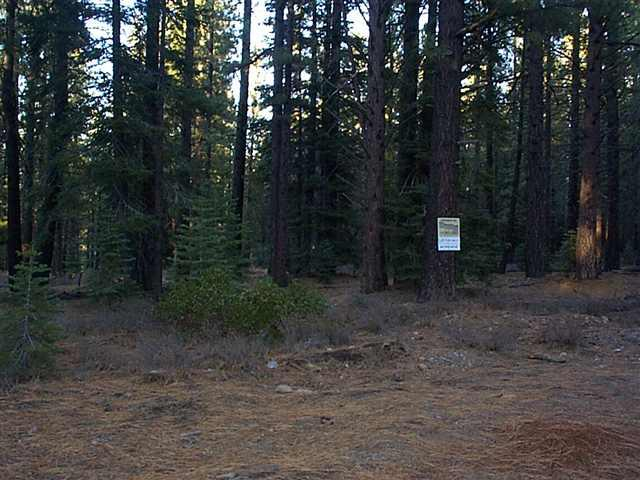 2 Pine Cone Dr, Truckee, CA 96161