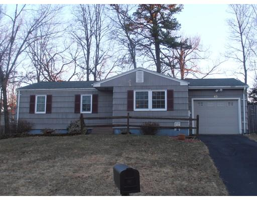 45 Blueberry Hill St, Springfield, MA