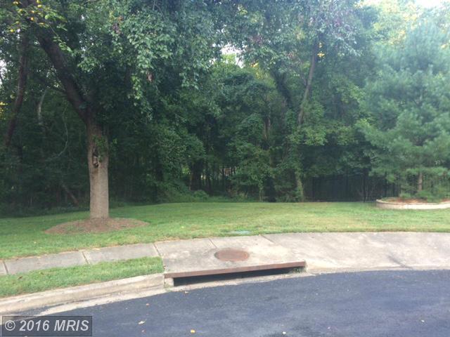 Round Hill Rd N, Arlington, VA 22207