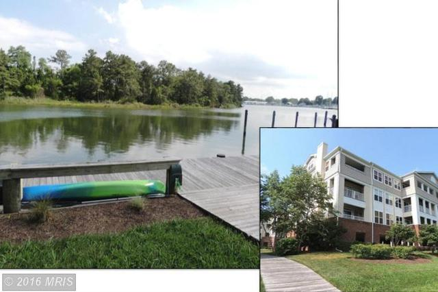 921 Oyster Bay Pl #304 Dowell, MD 20629