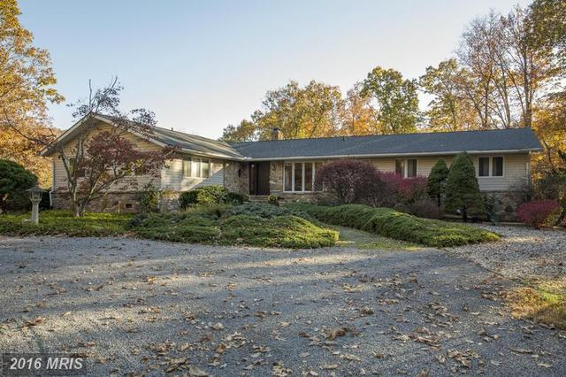 1767 Harry Byrd Hwy, Bluemont, VA 20135