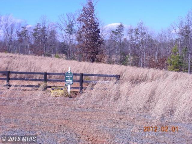 Trotting Trial, Richardsville, VA 22736