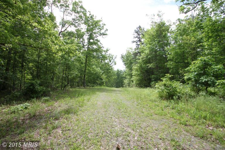 Old Mill Road, Culpeper, VA 22701