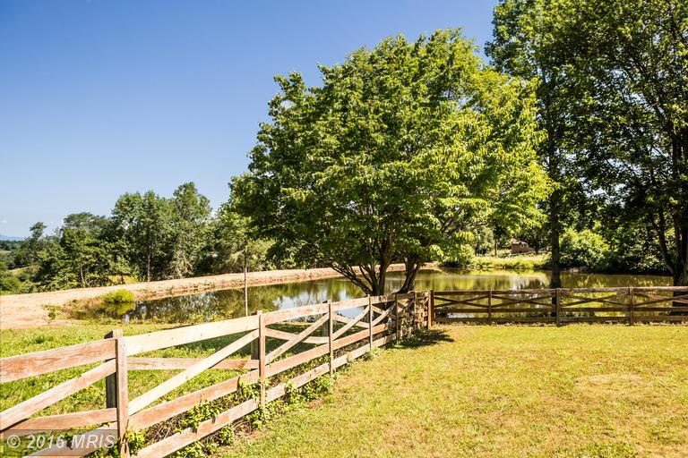 Lake Court, Culpeper, VA 22701