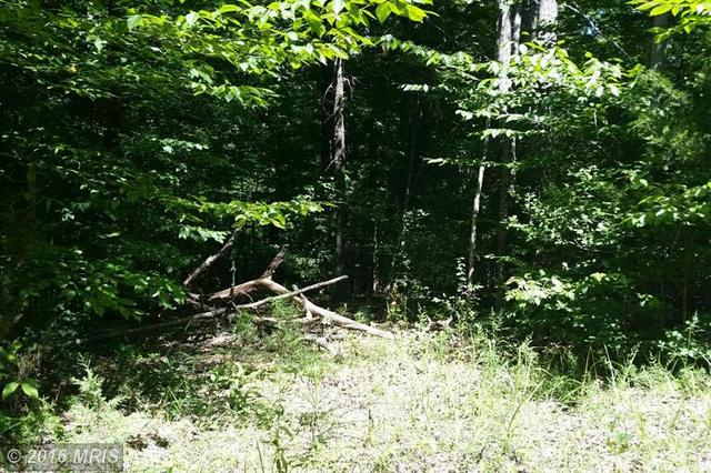 Port Rapids Rd, Richardsville, VA 22736