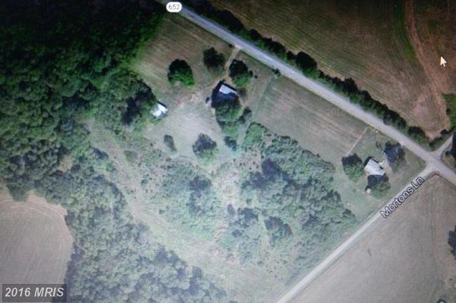 Mortons Ln, Rapidan, VA 22733