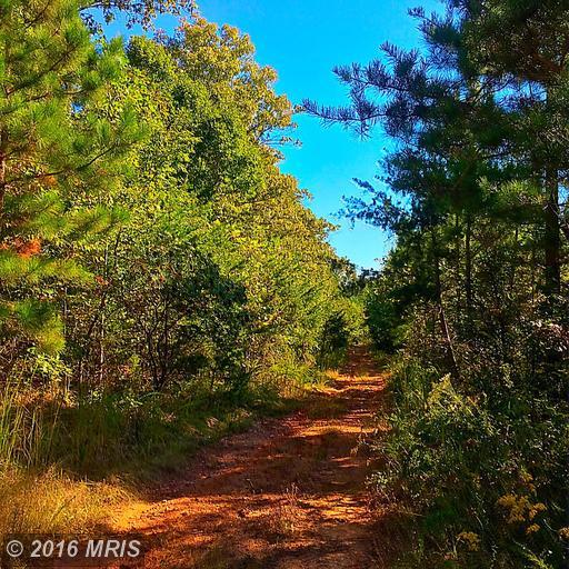 Marsh Road, Bealeton, VA 22712