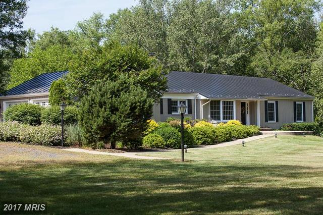 6231 Coon Tree Rd, The Plains, VA 20198