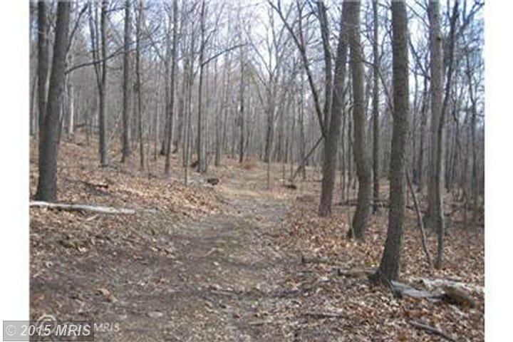 Lot 6 Fall Run Lane, Winchester, VA 22602