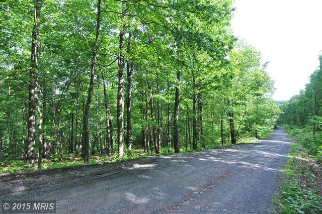 Fall Run Road, Winchester, VA 22602