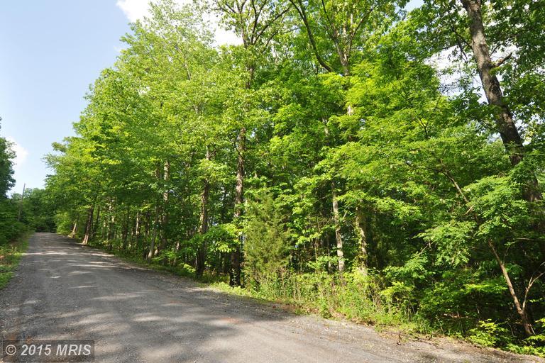 7 Fall Run Road ## -b, Winchester, VA 22602